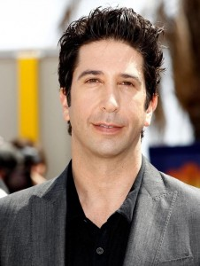 Madagascar 3 Europe's Most Wanted David Schwimmer