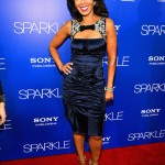 Sparkle LA Premiere - Debra Martin Chase 2