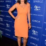 Sparkle screening - Debra Martin Chase 3