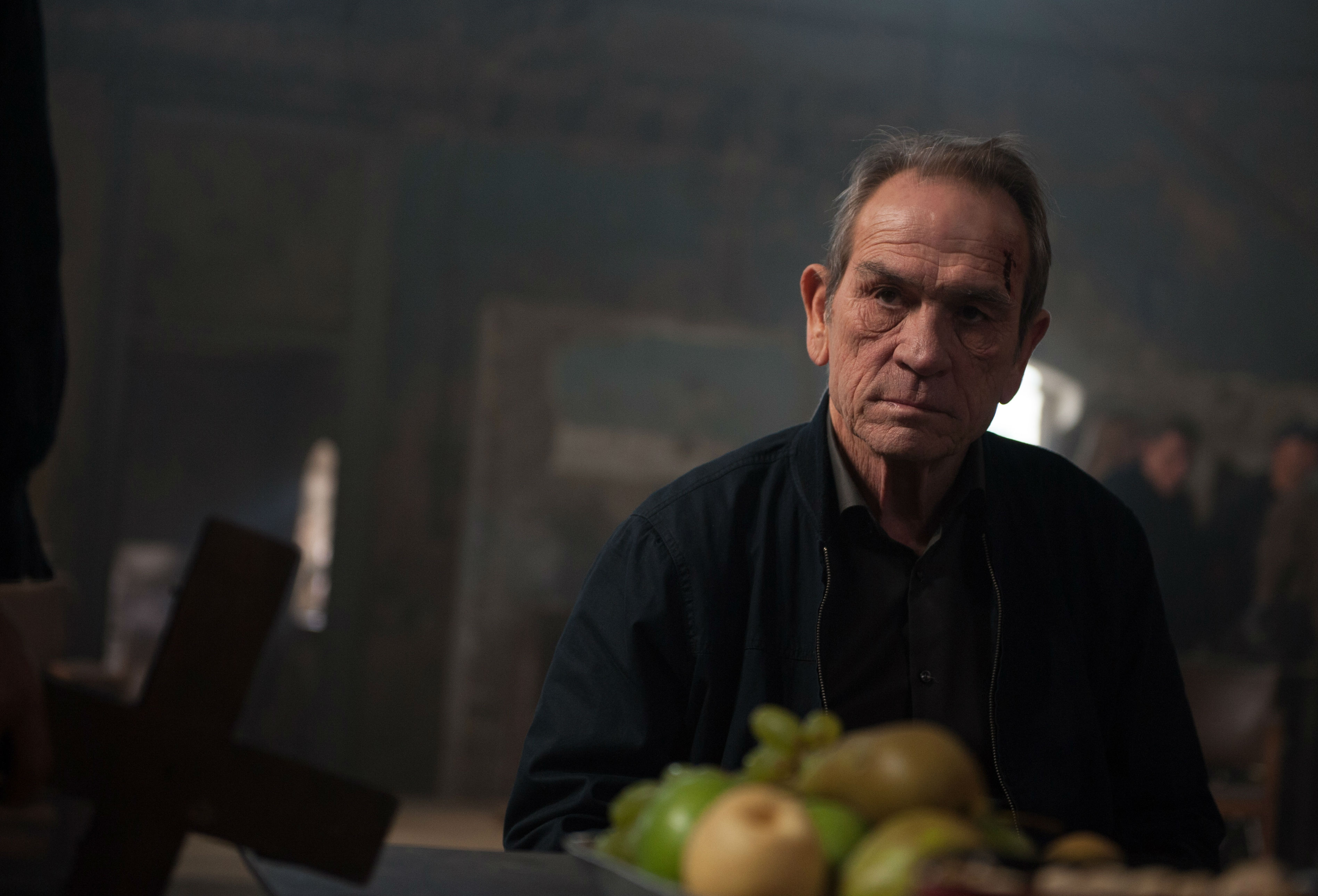 Tommy Lee Jones Movies | 12 Best Films You Must See - The ...