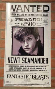fantastic-beasts-and-where-to-find-them-wanted-poster-eddie-redmayne-as-newt-scamander